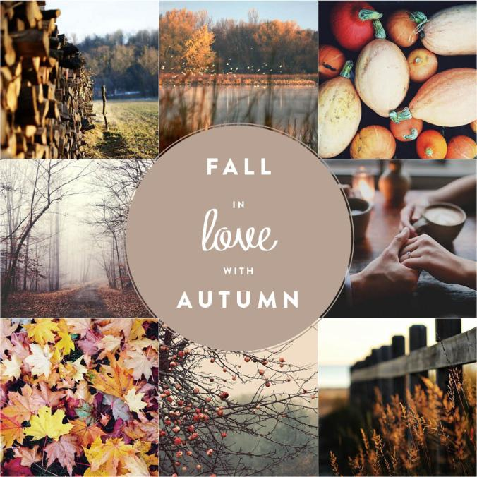 Fall in love with autumn | by JuYogi